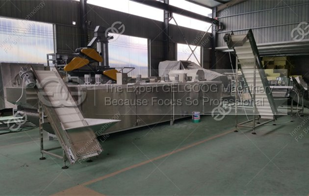 sunflower seeds roasting machine line