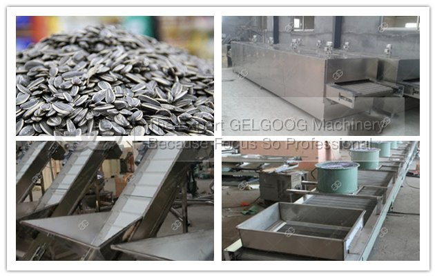 sunflower seeds process machine