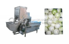Commercial Onion Peeling Mach