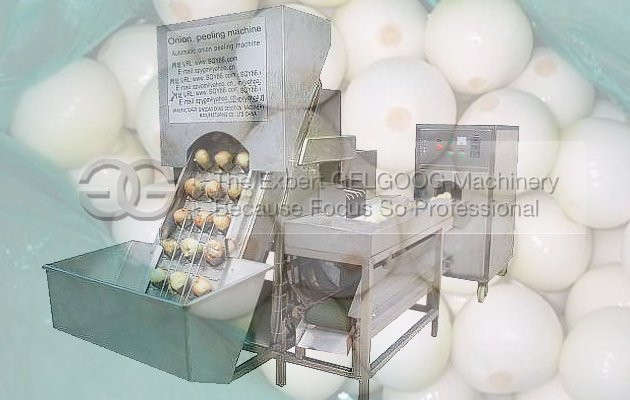 onion process machine