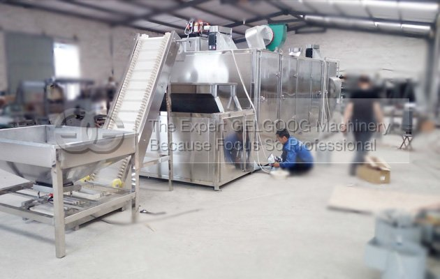 multifunction nuts roasting machine with best price china