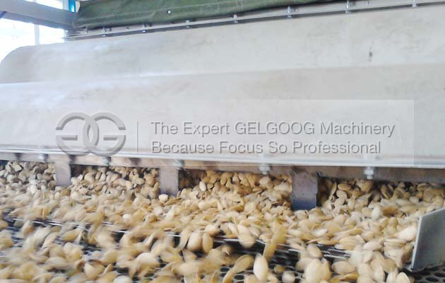 seeds hulling machine