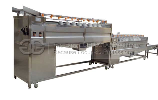 carrot washing and polishing machine