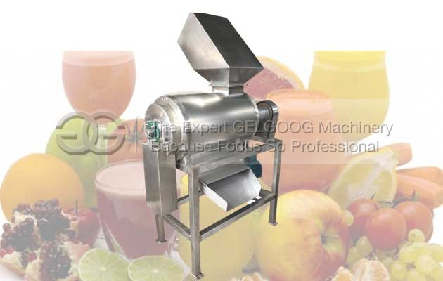 fruit pulp maachine manufacturer