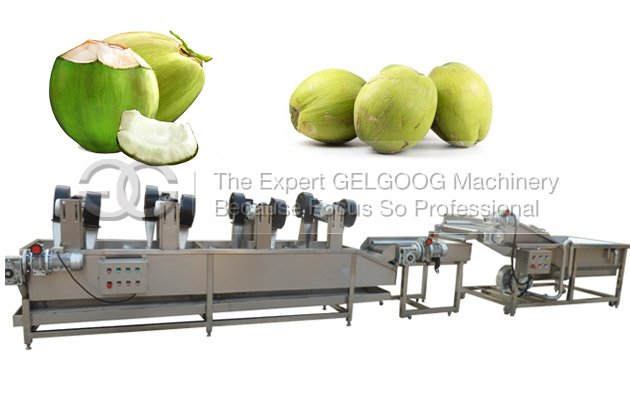 fresh coconut cleaning machine