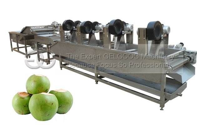 fruit washing machine for coconut