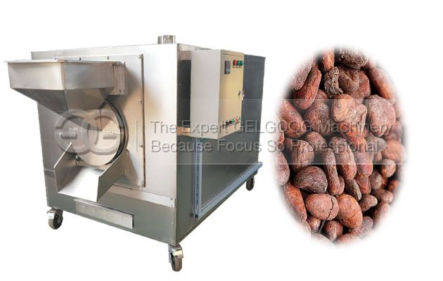cocoa bean roasting machine manufacturer for sale
