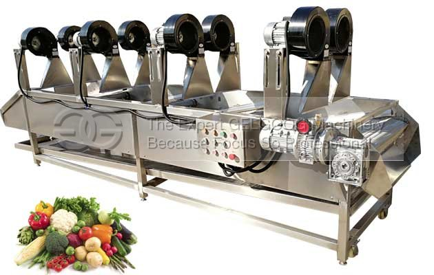 fruit vegetable air drying machine with best price