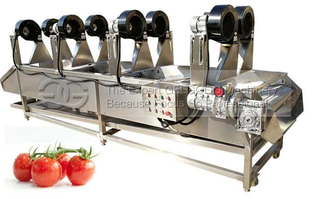 tomato de-water machine|tomato air drying machine