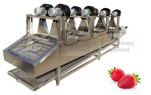 Strawberry dewater machine|Strawberry air drying machine