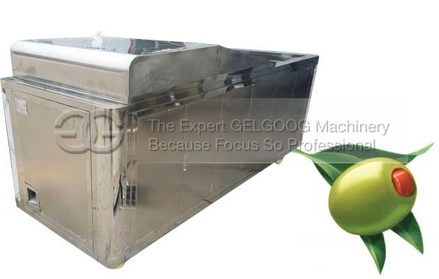 olive pitting machine for sale