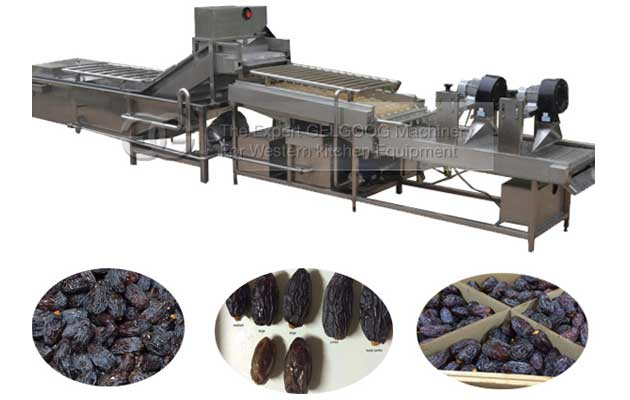 commercial date palm cleaning machine for sale