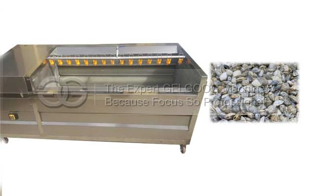 oyster washer for sale