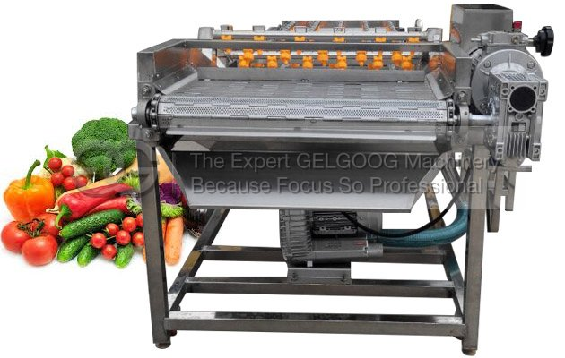Vegetable Washing and Drying Machine