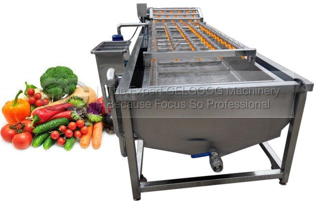 Industrial Fruit Vegetable Washer