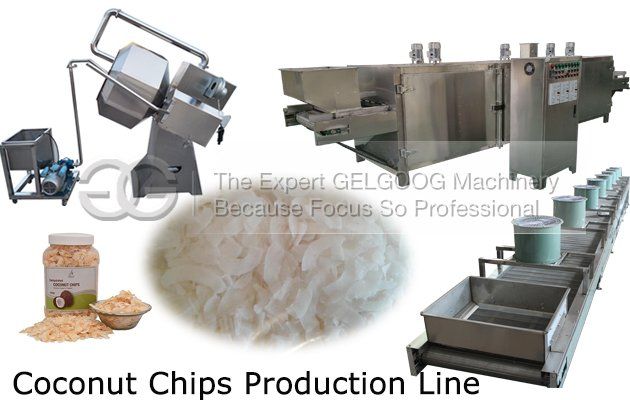 coconut chips making machine price