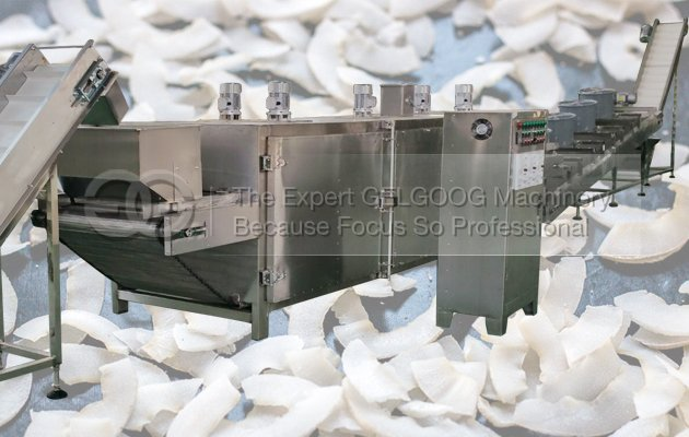 coconut chips making line manufacturer