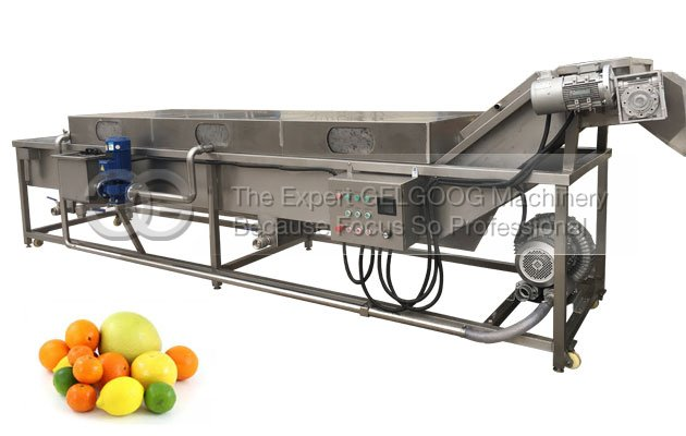 Automatic Citrus Fruit Washing Machine