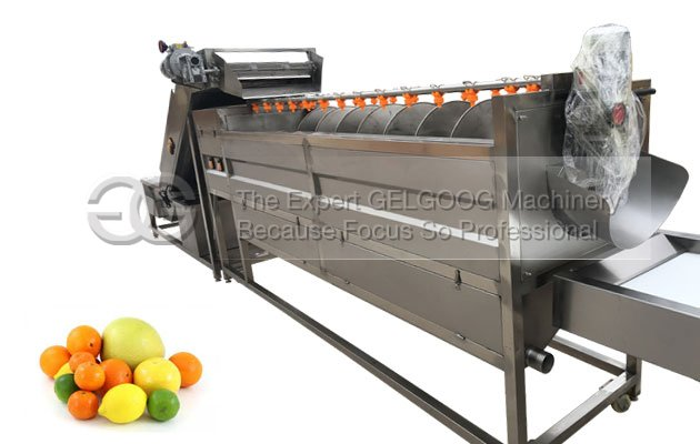 citrus fruit washing machine line