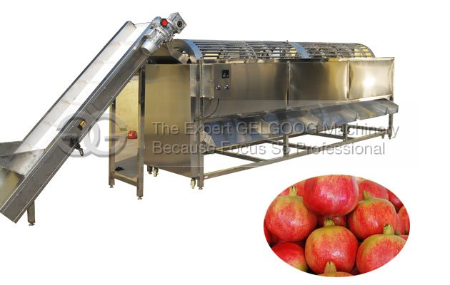 pomegranate sorting machine