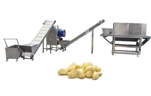industrial garlic peeling machine design