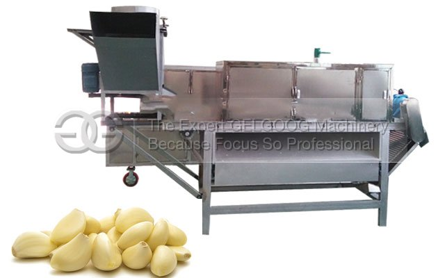 automatic garlic peeling machine manufacture in China