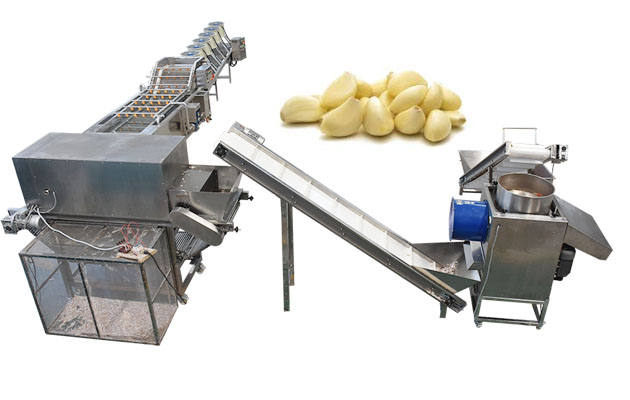 automatic garlic peeling machine price in india