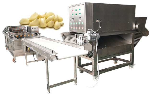 garlic peeling machine manufacturer China