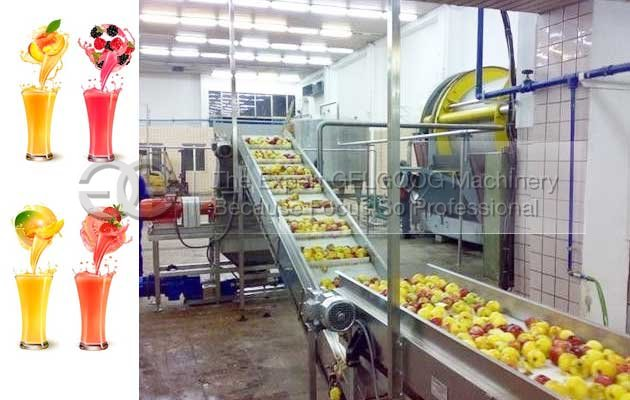 fruit juice processing plant cost in India