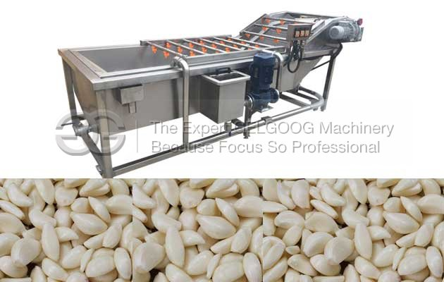 Garlic washing machine for sale garlic power machine