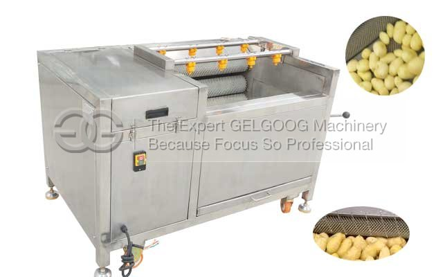 potato washing and peeling factory