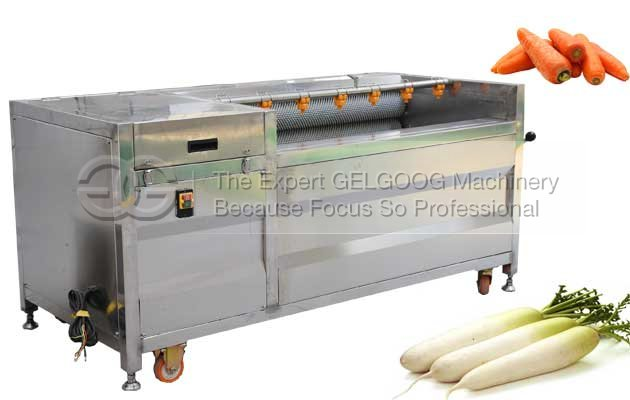 Horseradish washing and peeling machine