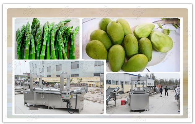 fruit vegetable blanching machine for sale manufacturer