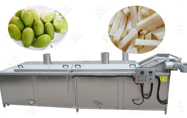 mango blanching machine manufacturer