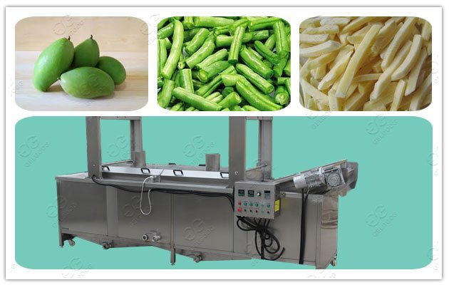 industrial fruit blanching and sterilizer Machine