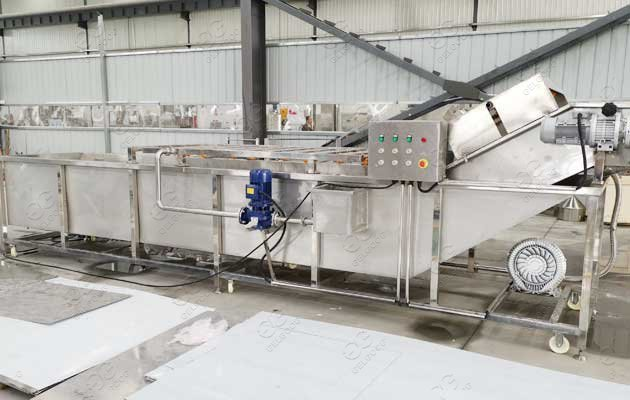 commercial vegetable washing machine manufacturers in india
