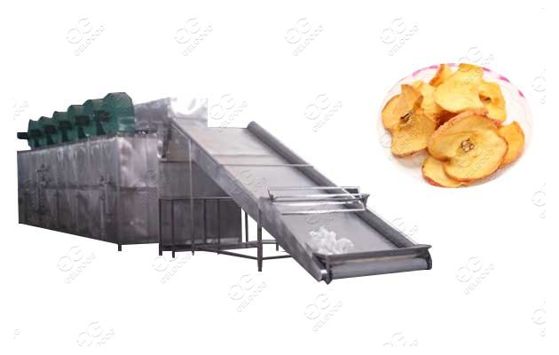 fruit drying machine in south africa