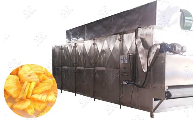 fruit drying machine available in cambodia