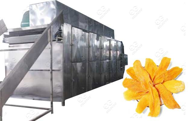 dried fruit processing equipment