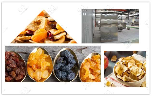 fruit dehydrator machine philippines