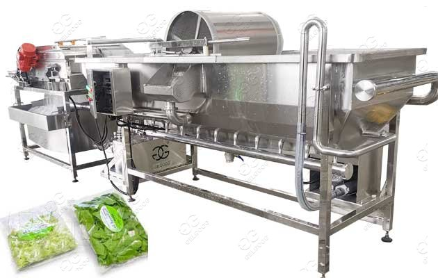commercial vegetable washing machine