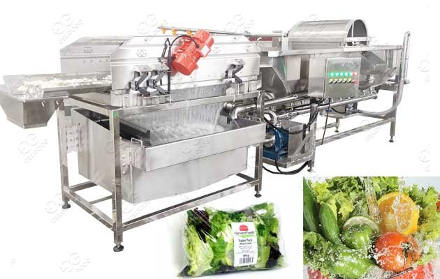 Vortex Type Vegetable Washing Machine New Type