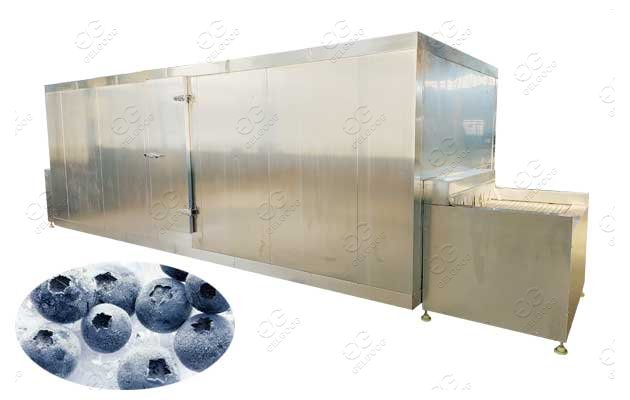 Fruit Blueberry Freeze Drying Machine Manufacturer