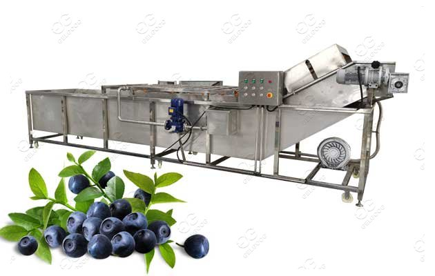 Automatic Fruit Blueberry Washing Machine Price