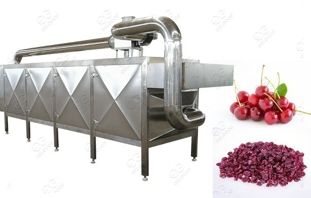 cranberry dehydration machine manufacturer