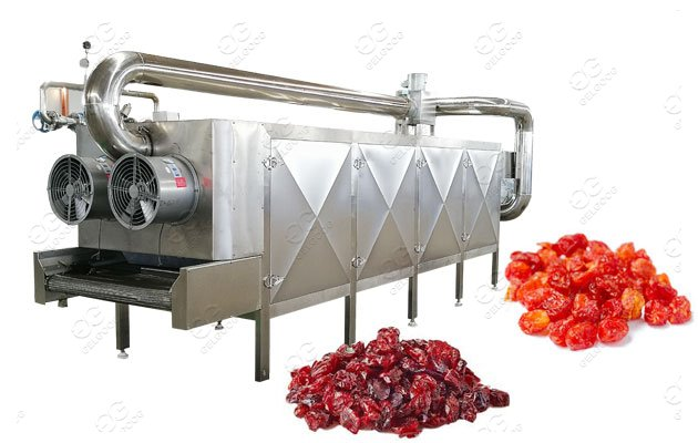 automatic fruit dehydration machine supplier