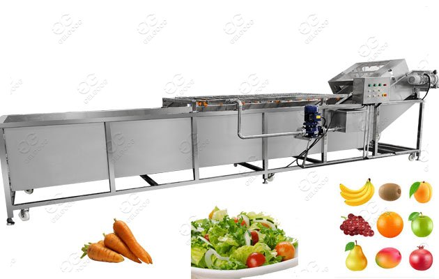 Fruit Washing Machine Manufacturer