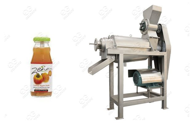 commercial cashew apple juice processing plant