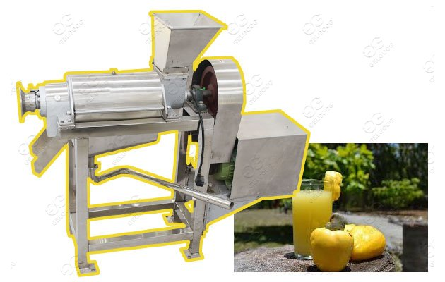 cashew apple juice processing machinery