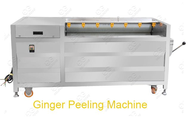 ginger cleaning machine india